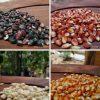 variedades de maiz